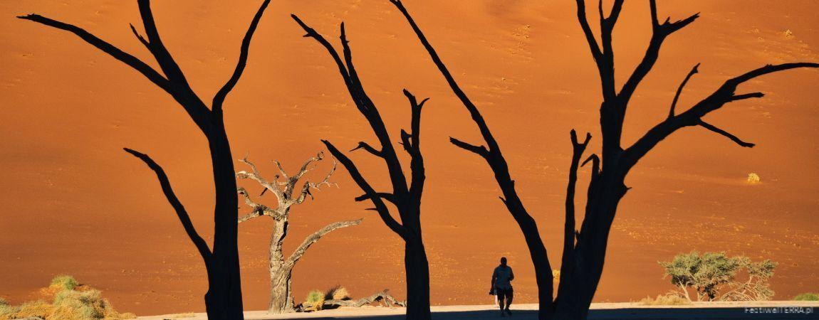 Namibia – przez pustynię i busz